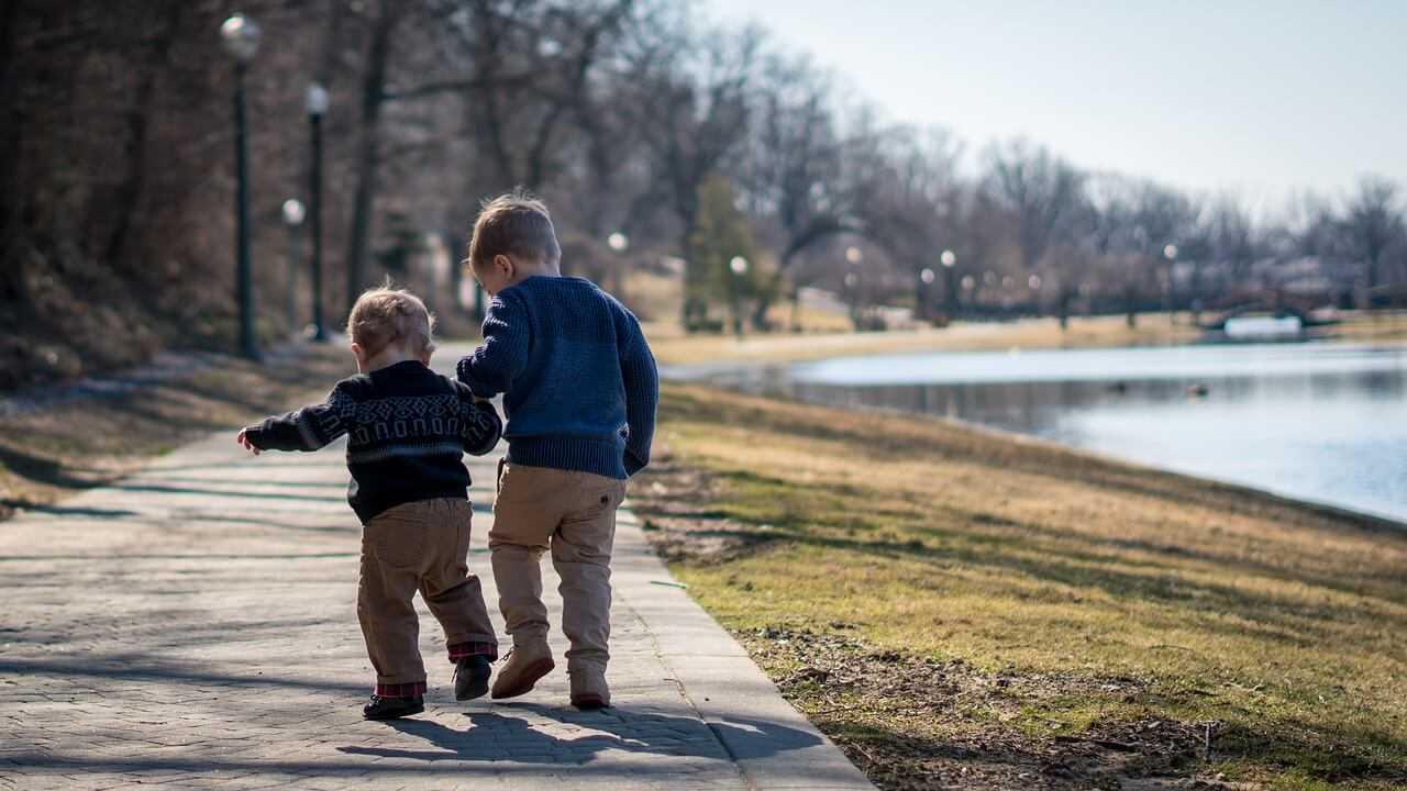 מריבות בין אחים - תנו להם לריב בשקט